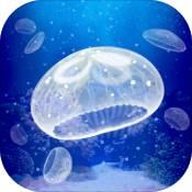 养育水母的治愈游戏app下载_养育水母的治愈游戏app最新版免费下载