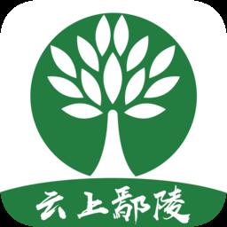 云上鄢陵客户端app下载_云上鄢陵客户端app最新版免费下载