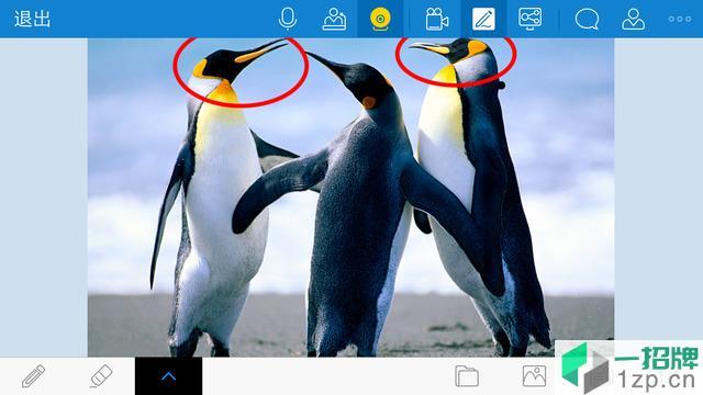 好视通手机版(视频会议软件)app下载_好视通手机版(视频会议软件)app最新版免费下载