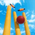 板球世界杯手游下载_板球世界杯手游最新版免费下载