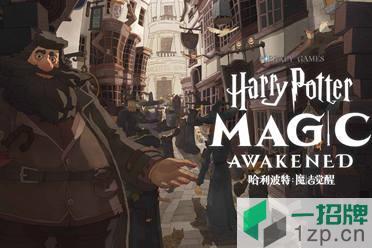 网易《哈利波特:魔法觉醒》