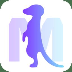 美通行app下载_美通行app最新版免费下载