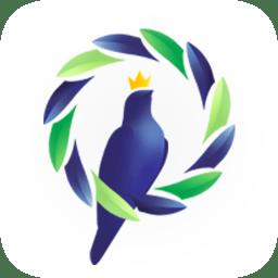 鸽羽林手机版app下载_鸽羽林手机版app最新版免费下载