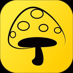 蘑菇丁app最新版(院校实习)app下载_蘑菇丁app最新版(院校实习)app最新版免费下载