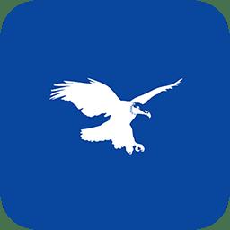 金战鹰网络态势感知系统app下载_金战鹰网络态势感知系统app最新版免费下载