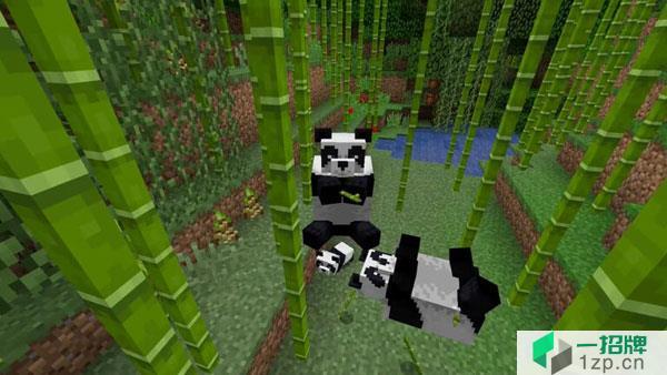 我的世界熊猫在哪生成 熊猫行为习惯介绍_