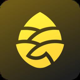 松果出行电单车appapp下载_松果出行电单车app手机软件app下载