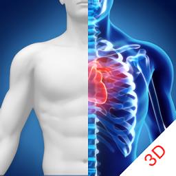 3D人体解剖图谱app下载_3D人体解剖图谱手机软件app下载