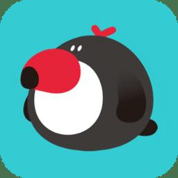 犀鸟公考app下载_犀鸟公考手机软件app下载