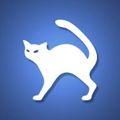 飞猫云vip账号共享软件app下载_飞猫云vip账号共享软件手机软件app下载