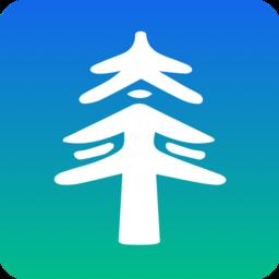 太平通(太平洋保险服务)v2.0.5安卓版
