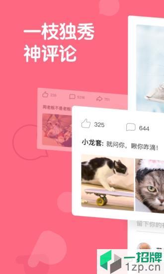 皮皮虾去广告去水印版app下载_皮皮虾去广告去水印版手机软件app下载