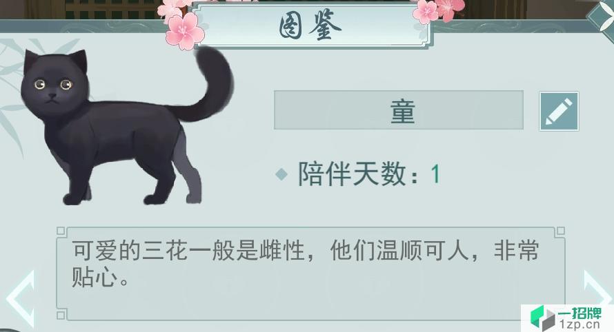 《江湖悠悠》宠物亲密度提升攻略