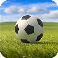 足球英雄杯app下载_足球英雄杯app最新版免费下载