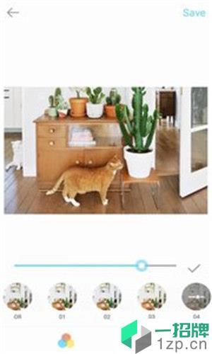 美颜美图滤镜相机app下载_美颜美图滤镜相机app最新版免费下载